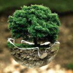 Zero Carbon Future